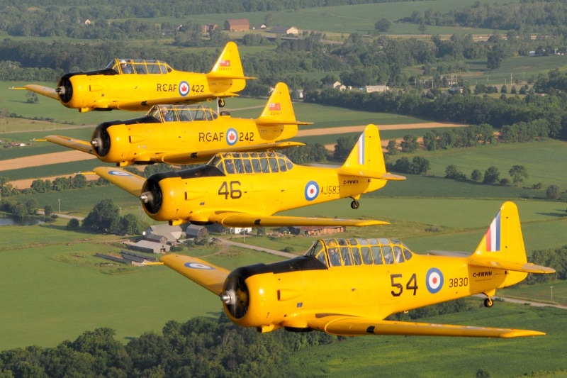 Harvards-in-formation